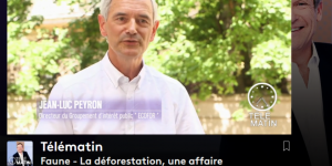 Interview-Gip-Ecofor
