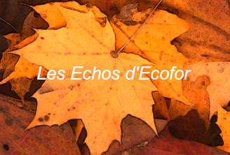 Echos-Ecofor
