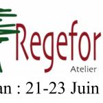 """7e atelier REGEFOR : """"Forêt en crise, relevons le défi !"""""""